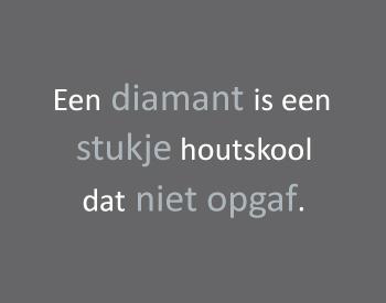 oneliner_assessments_nl